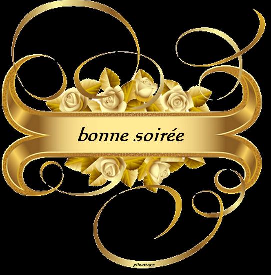 BONNE SOIREE A TOUS