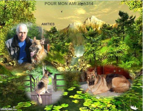 POUR MON AMI ALPH314