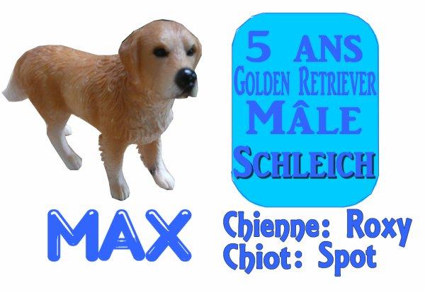 _ Roxy, Max et Pongo _