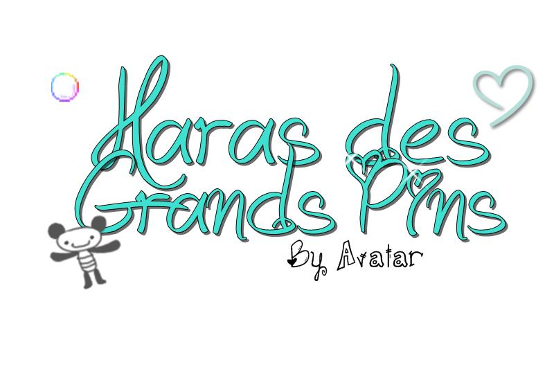 Blog de Le-Haras-des-Grands-Pins