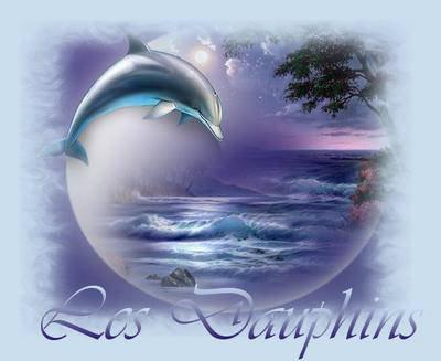 le monde des dauphins