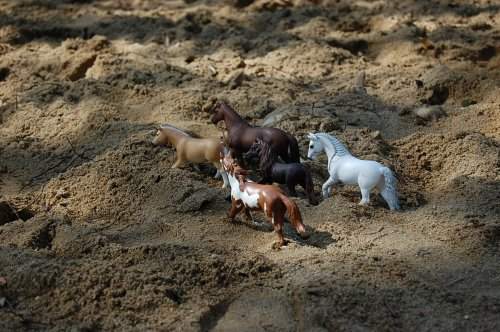 photo schleich dans la nature