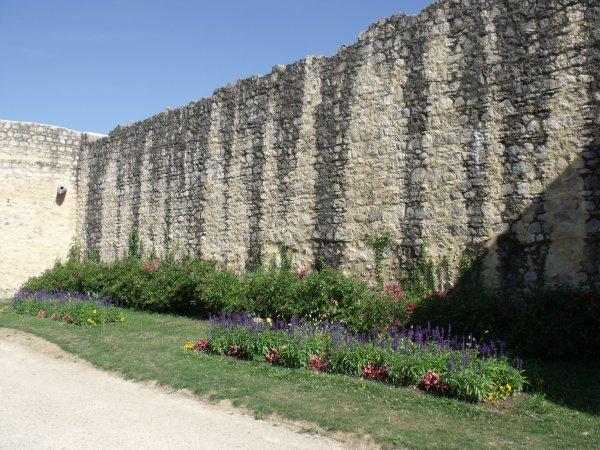 les abords du château  5