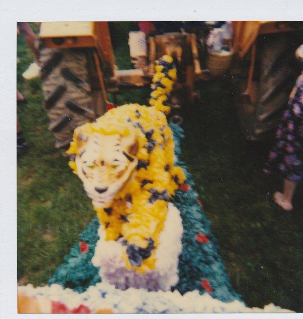 fêtes des roses 1979