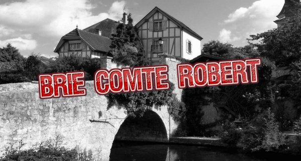 Groupe Brie Comte Robert, partage et discussion.