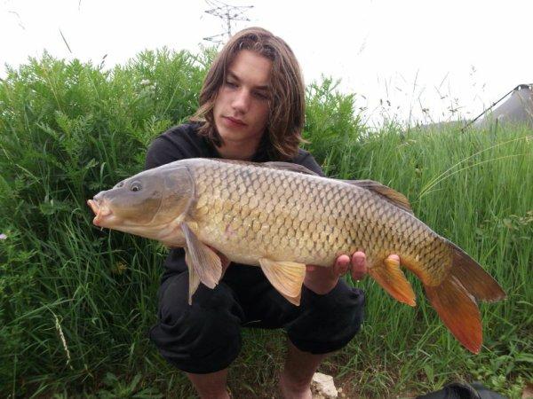 Un beau petit poisson