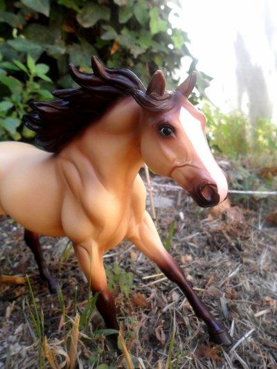 >> Mon petit poney <<