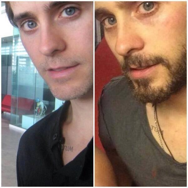 Jared 2011/2014