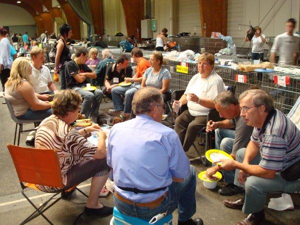 LES EPAGNEULS DE SAINT USUGE A L EXPOSITION DU 5 SEPTEMBRE MACON 2010