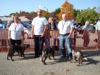 REGIONALE D ELEVAGE 9 OCTOBRE 2010