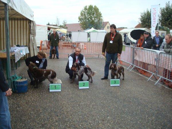 MERVANS 2011 REGIONALE D ELEVAGE