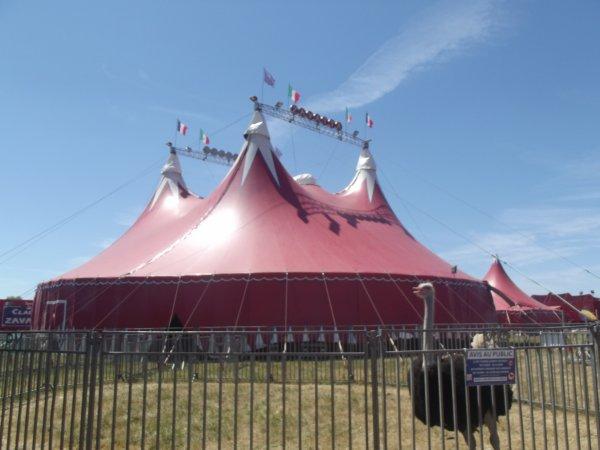 Le cirque Claudio Zavatta à la Tranche sur mer juillet 2017 (7)