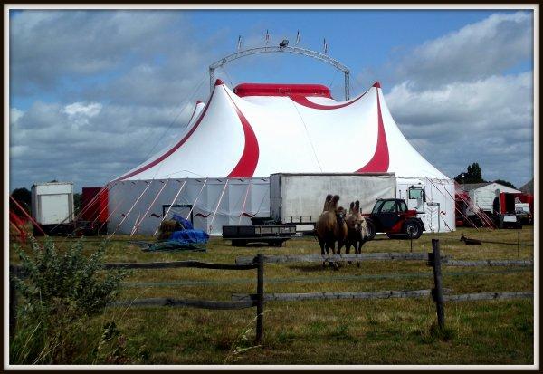 cirque Fantasia à Jard sur mer Juillet 2017 (4)
