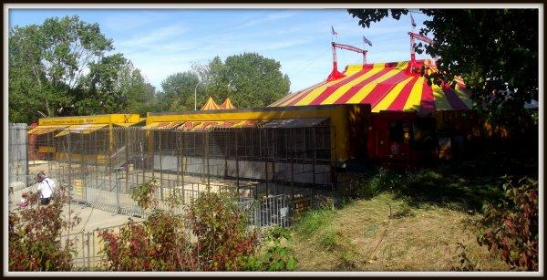 cirque Pinder  saint Gilles Croix de Vie août 2017 (2)