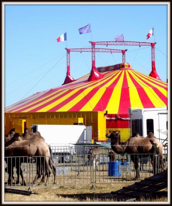cirque Pinder à la Tranche sur mer août 2017 (4)