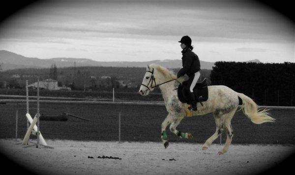Une passion; L'Equitation
