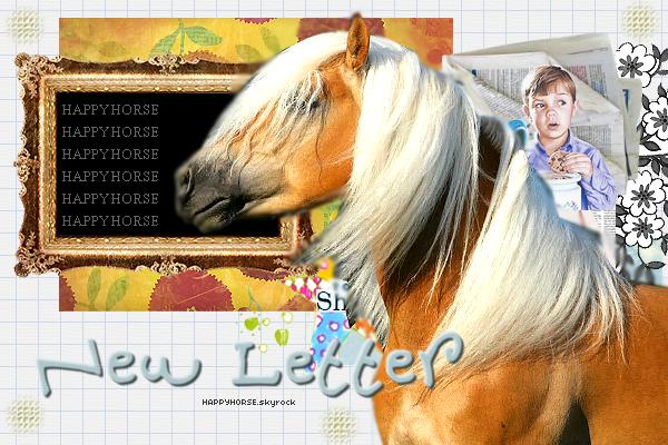 o0o New Letter o0o