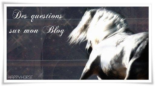 o0o Questions essantiels sur mon blog, ton avis o0o