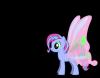 Pony Création