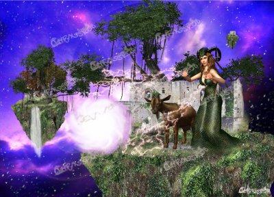 le capricorne, sage et raisonnable, déterminé, qui, même la tête dans les nuages, garde les pieds sur terre.