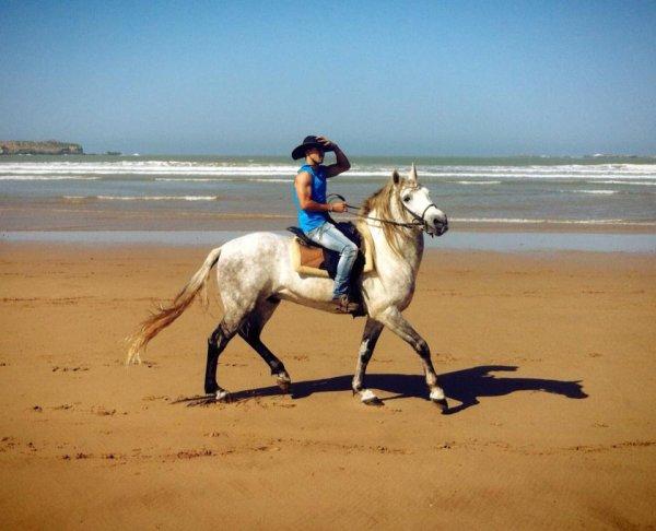m@i e mon cheval tishka