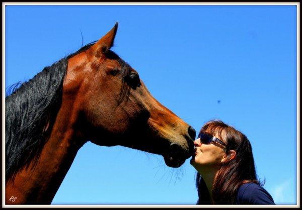 L'extérieur du cheval exerce une influence bénéfique sur l'intérieur de l'homme ..
