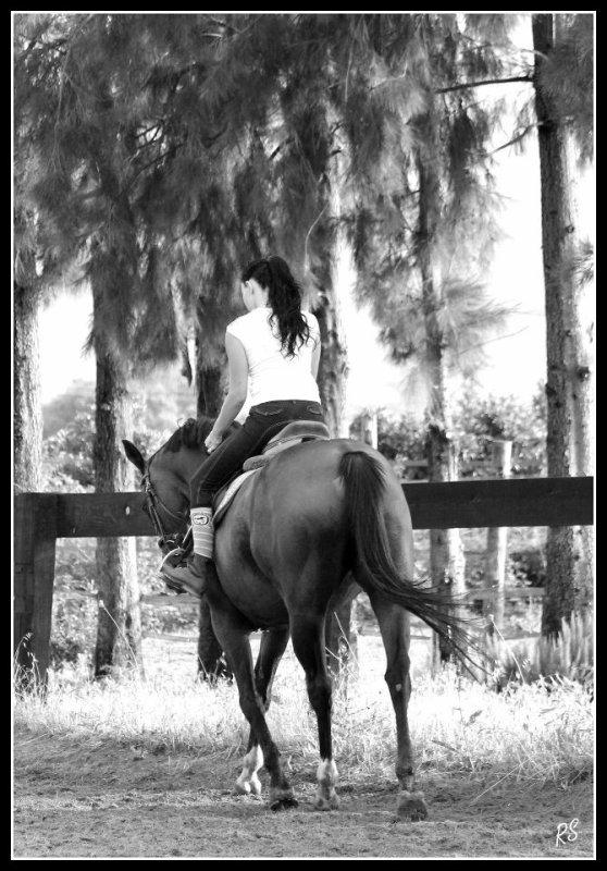 Etre à cheval c'est être à une hauteur qui ne s'explique pas ...