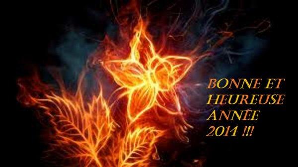 Bonne et heureuse année 2014 !!!
