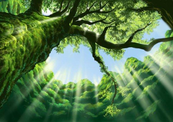 La Vieille Branche