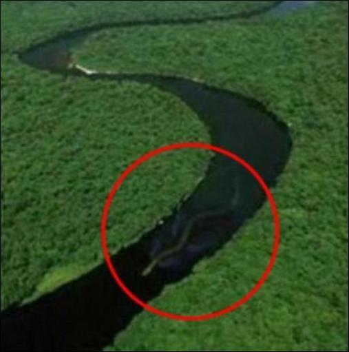 Des photos du plus grand serpent jamais vu