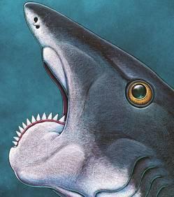L'étrange secret de redoutables poissons préhistoriques enfin dévoilé