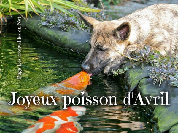 POISSON D'AVRIL ?