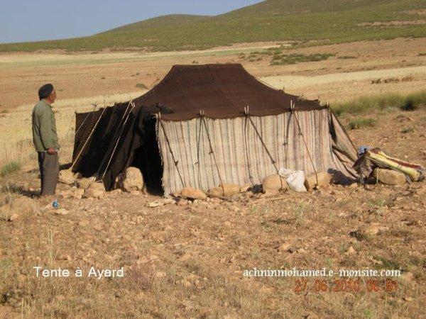 Images de la région d'Izalfane