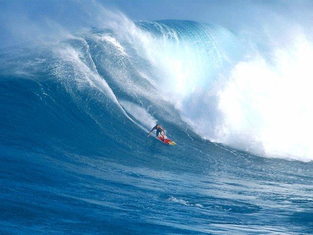 Blog de SURFALEX