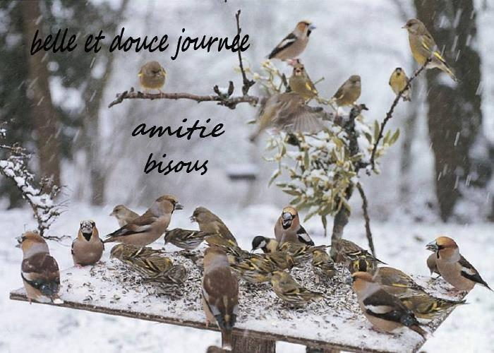 bonjour à tous mes amis(e)s .. je vous souhaite une belle journée de vendredi ..et un excellent début de week-end .. bisous Josette