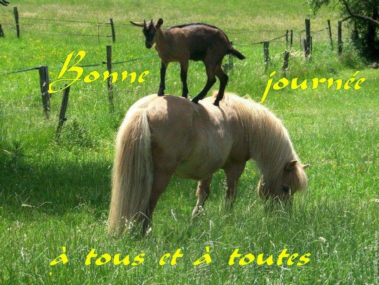 bonjour à tous mes amis(e)s .. je vous souhaite une belle journée de samedi .. bisous Josette