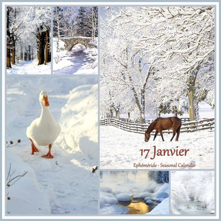 bonjour ! déjà mardi je souhaite à tous mes amis(e)s une belle journée hivernale ...bisous Josette