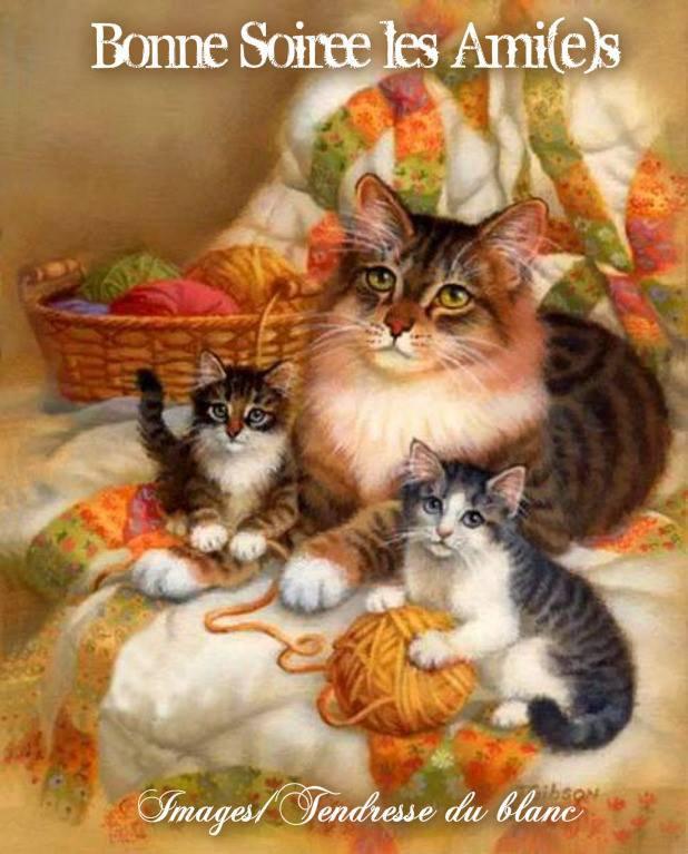 bonsoir à tous mes amis(e)s ..je vous souhaite une bonne soirée ,et une agréable nuit ... bisous Josette