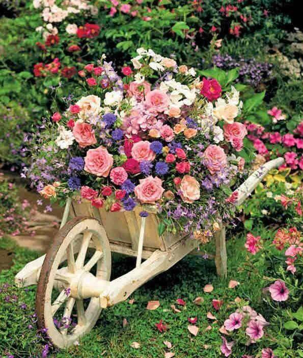 bonjour à tous mes amis(e)s .. je vous souhaite une belle journée de mercredi .. bisous Josette