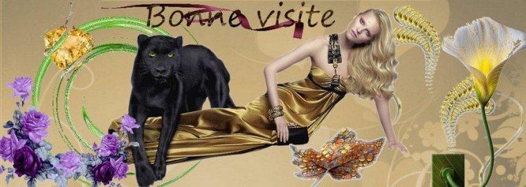 bonsoir à tous mes amis(e)s ..je vous souhaite une bonne soirée ,et une douce nuit ... bisous Josette