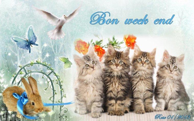 bonjour à tous mes amis(e)s .. je vous souhaite une belle journée de vendredi ensoleillée..et un excellent début de week-end .. bisous Josette