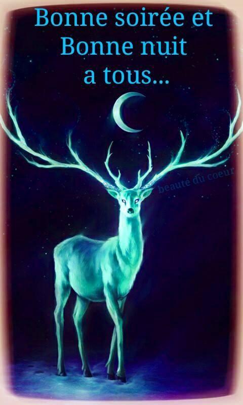 bonsoir à tous mes amis(e)s ..je vous souhaite une bonne soirée ,et une nuit douce et paisible ... bisous Josette