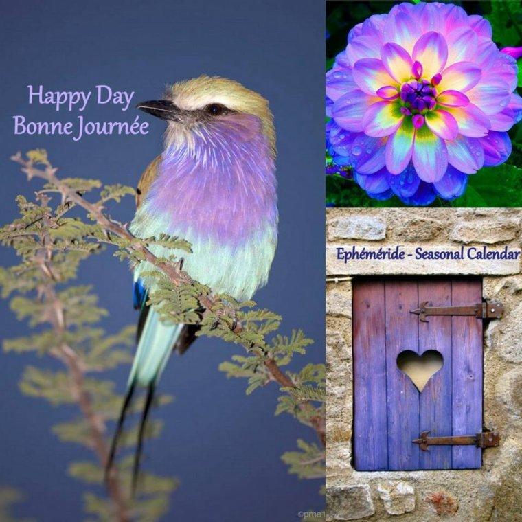 bonjour à tous mes amis(e)s .. je vous souhaite une très belle journée de samedi ensoleillée.. bisous Josette