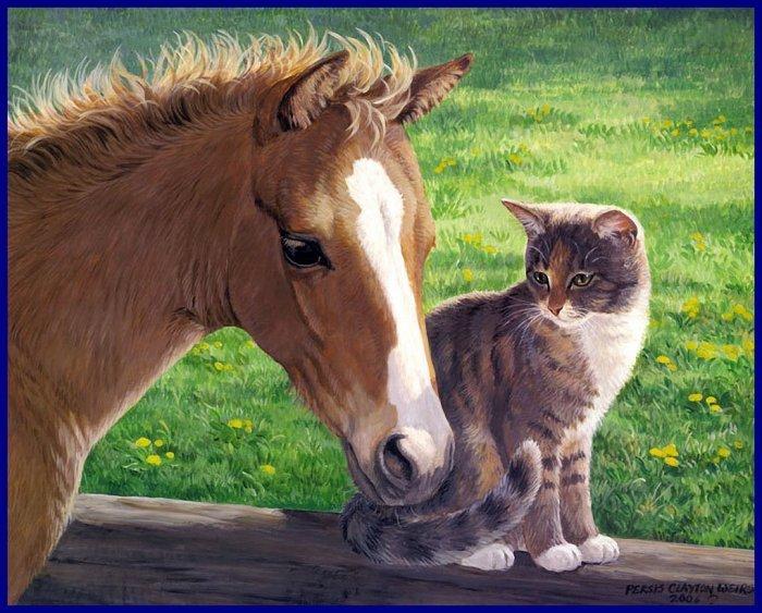 bonsoir à tous mes amis(e)s ..je vous souhaite une bonne soirée , une douce et agréable nuit ... bisous Josette
