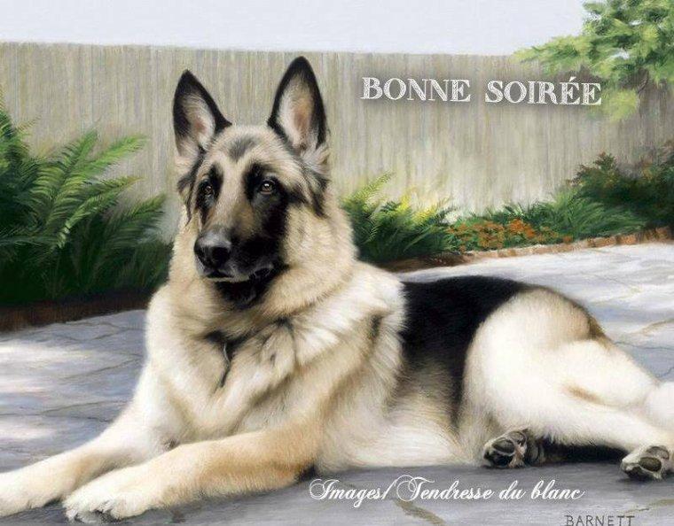 bonsoir à tous mes amis(es) .. je vous souhaite une belle soirée, et une nuit douce et tendre .. bisous Josette