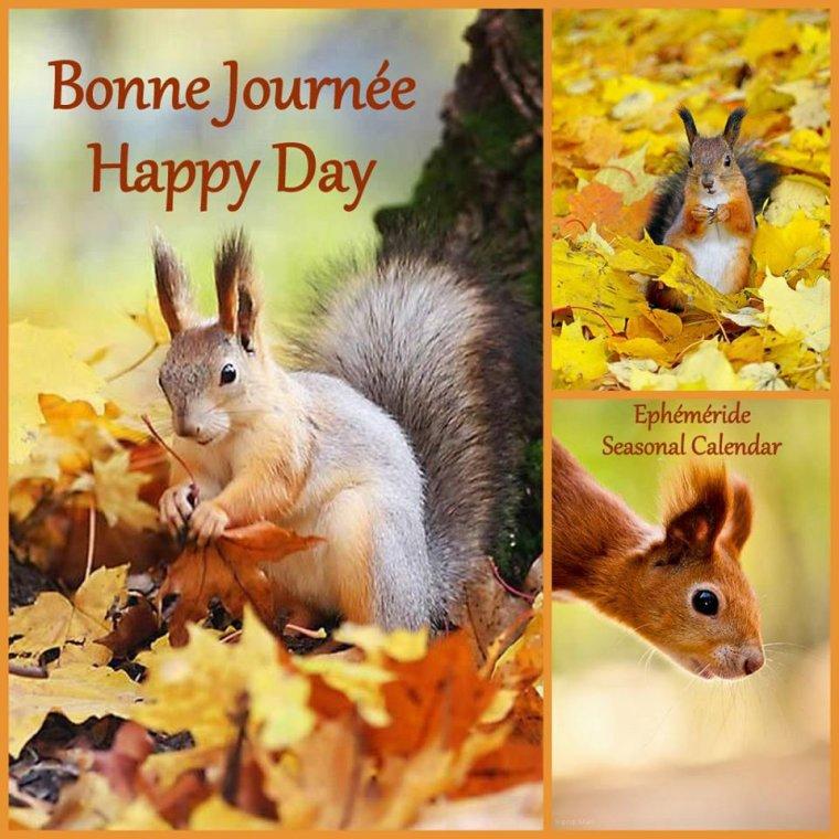 bonjour à tous mes amis(es) ... je vous souhaite une bonne journée de jeudi ensoleillée ... bisous Josette