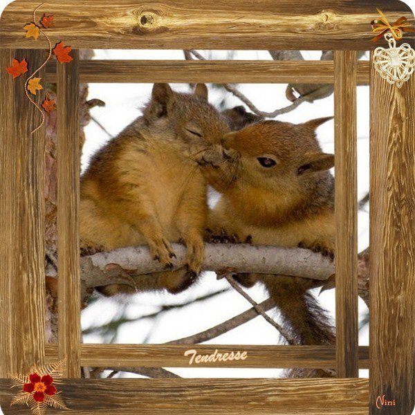 bonjour à tous mes amis(es) ... je vous souhaite une bonne journée de samedi, ici temps pluvieux ... bisous Josette