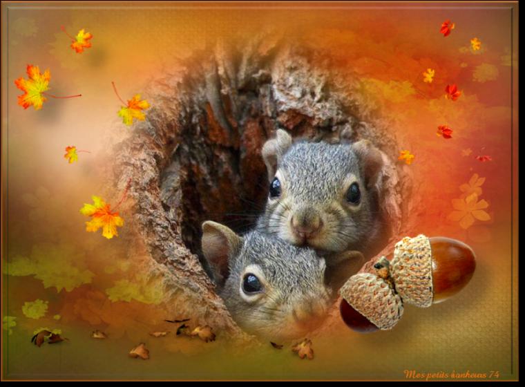 bonjour à tous mes amis(es) .. je vous souhaite une bonne journée de mardi, ici sous la pluie !!! .. bisous Josette
