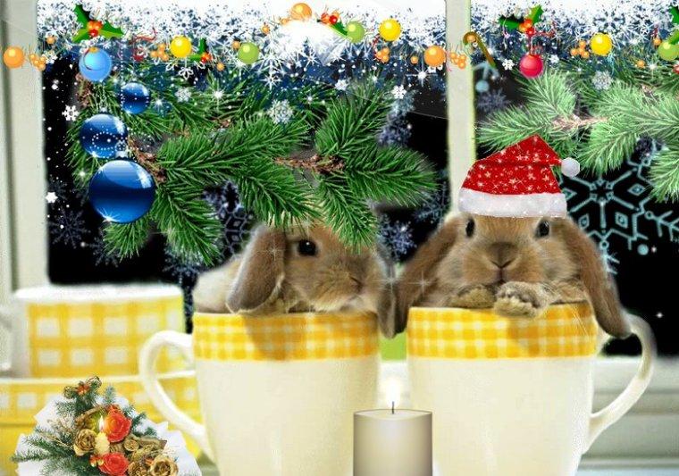 bonjour à tous mes amis(es) ...je vous souhaite une bonne journée de jeudi ... bisous Josette