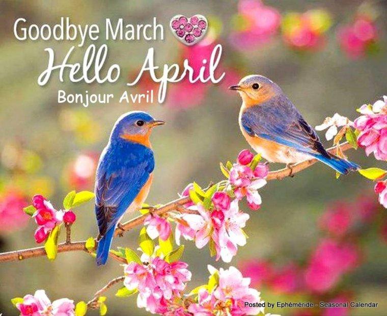 bonjour à tous mes amis(es) ... je vous souhaite une très bonne journée de samedi  ... bisous Josie